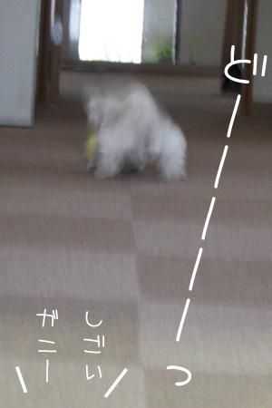 12_14_3361.jpg
