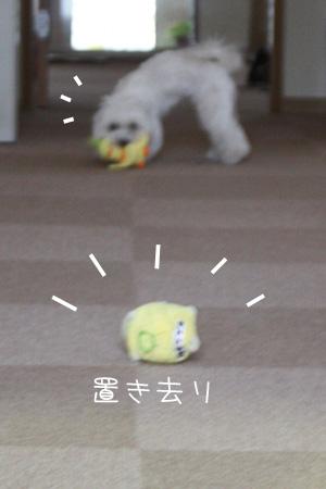 12_14_3394_1.jpg
