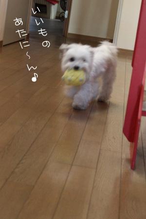 12_15_3813.jpg