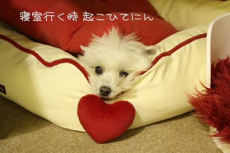 12_16_3836.jpg