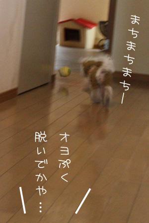 12_16_3992.jpg