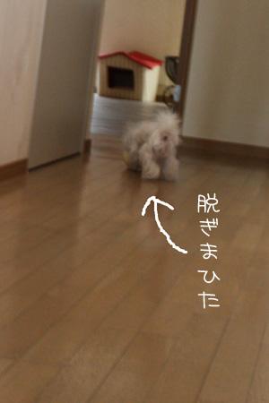 12_16_4016.jpg