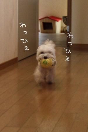 12_16_4027.jpg