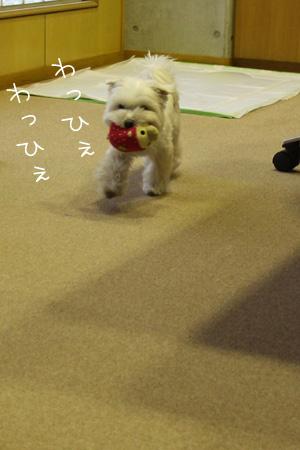 12_17_4104.jpg