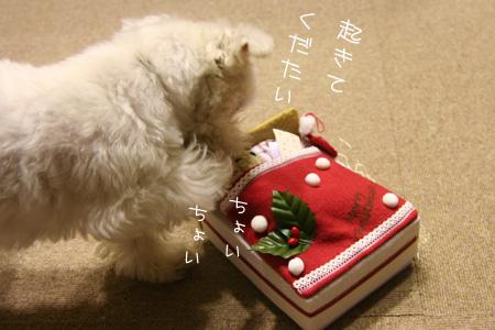 12_18_4184.jpg