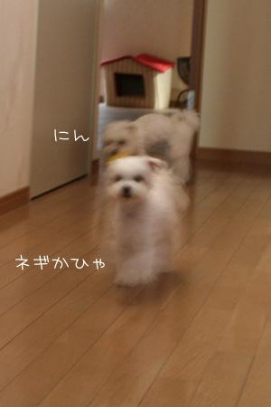 12_18_4536.jpg