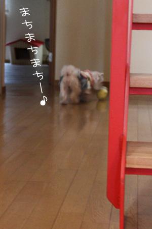 12_21_4660.jpg
