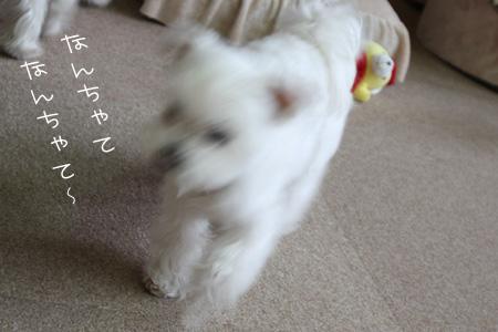 12_22_4687.jpg