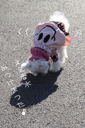 12_23_4914.jpg