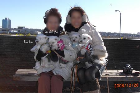 12_26_0441.jpg