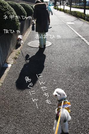 12_26_5277.jpg