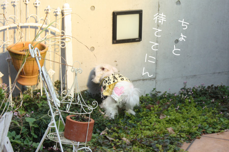 12_30_5594.jpg