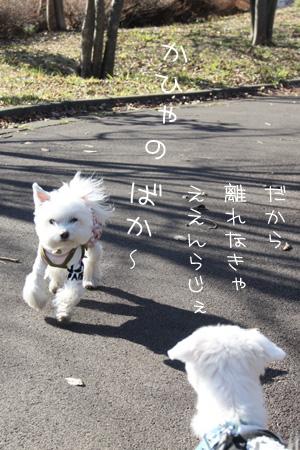 12_31_5773.jpg