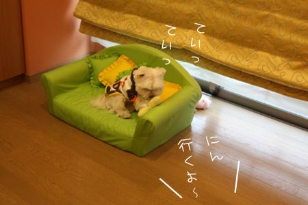 12_9_2709.jpg