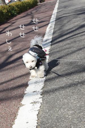 1_14_7159.jpg