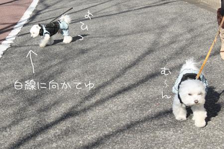 1_16_7494.jpg