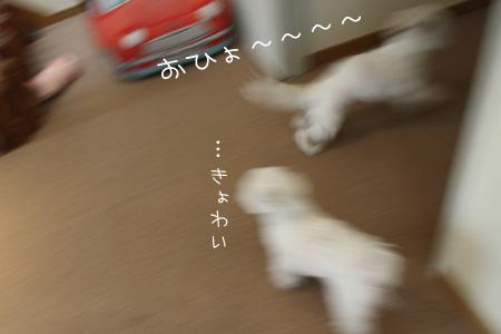 1_18_7909.jpg