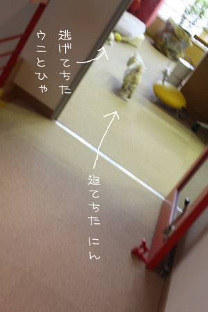 1_18_7914.jpg