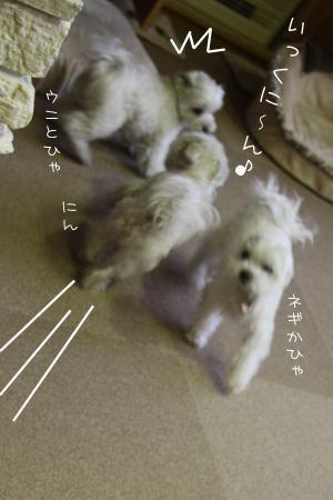 1_18_7923.jpg