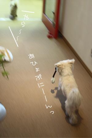 1_20_8419.jpg