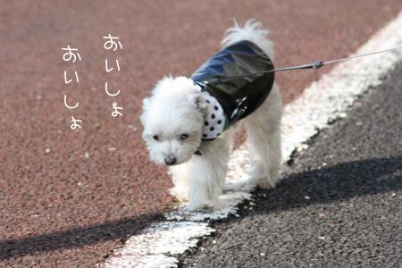1_23_8876.jpg