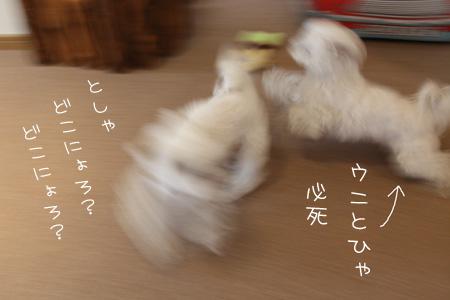 1_24_9205.jpg