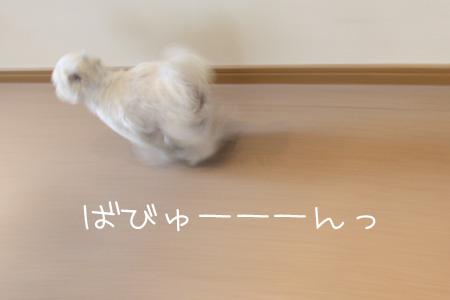 1_24_9206.jpg