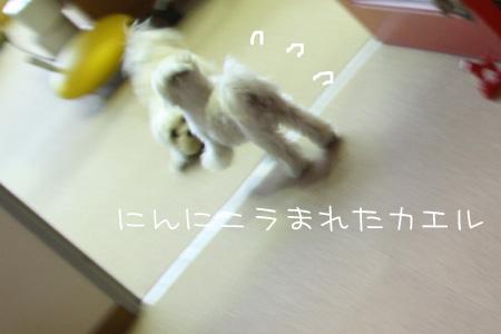 1_24_9209.jpg