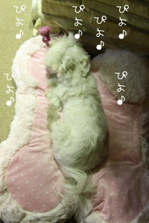 1_26_9709.jpg