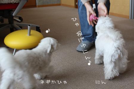 1_28_9906.jpg