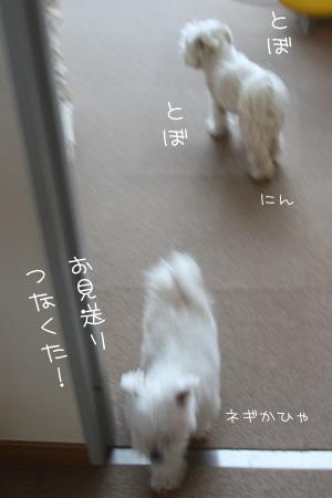 1_31_0593.jpg