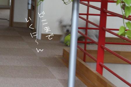 1_31_0688.jpg