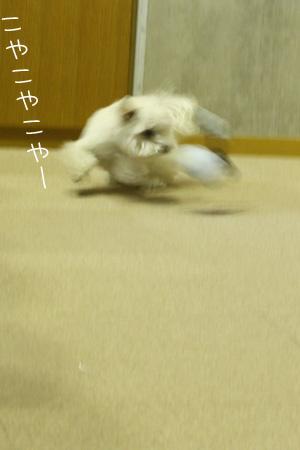 2_10_3698_1.jpg