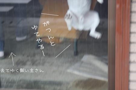 2_15_4430.jpg