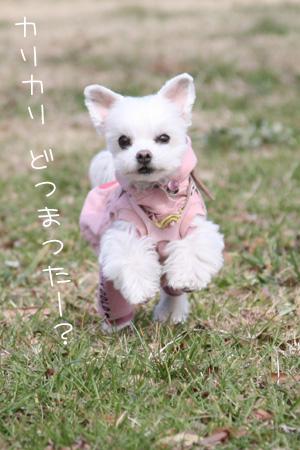 2_16_4579.jpg