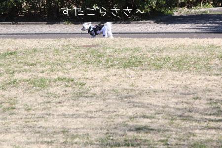 2_17_4659.jpg