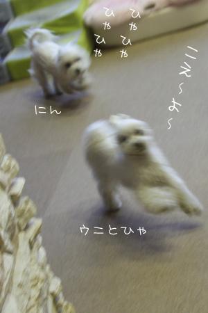 2_20_5218.jpg