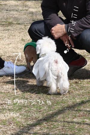 2_22_5586.jpg