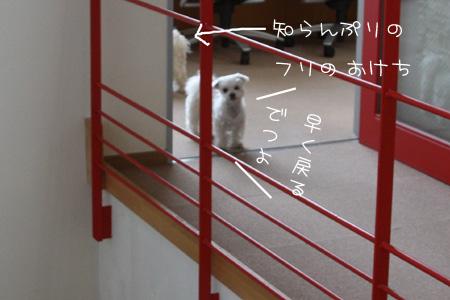 2_25_6081.jpg