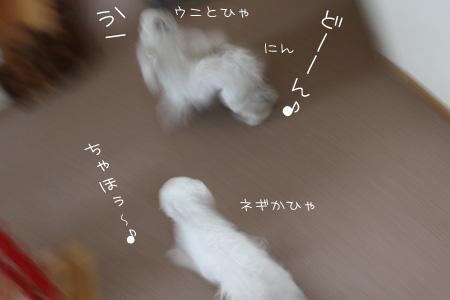 2_25_6090.jpg