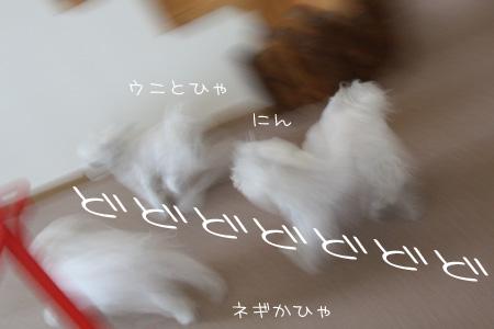 2_25_6091.jpg