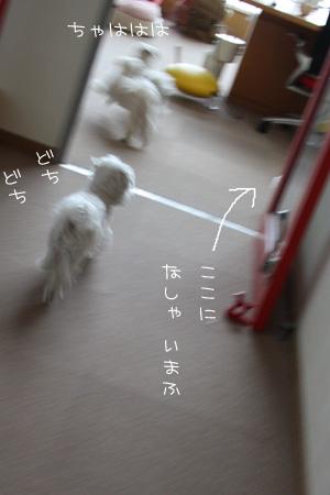 2_25_6095.jpg