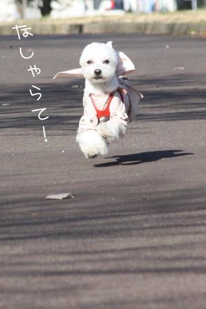 2_6_2650.jpg