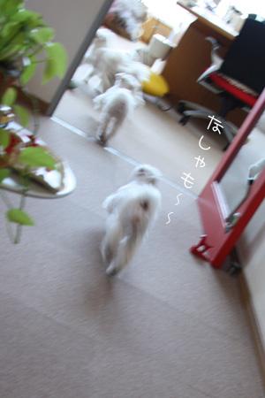 2_7_2774.jpg