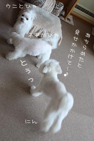 2_7_2798.jpg