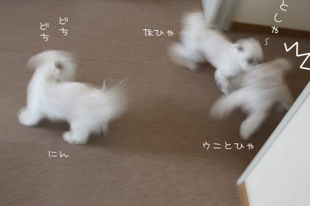 2_9_3478.jpg
