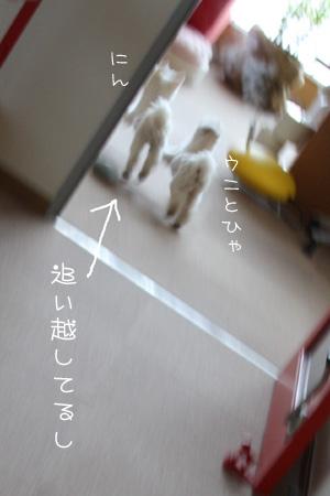 2_9_3483.jpg