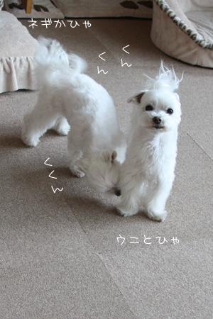 2_9_3502.jpg