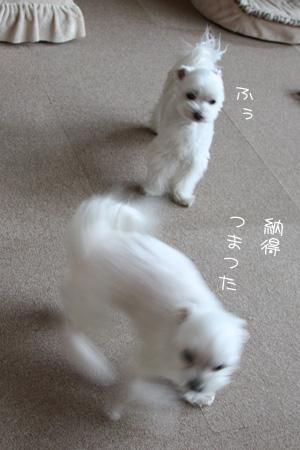 2_9_3510.jpg
