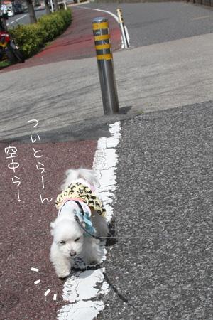 3_18_0224.jpg